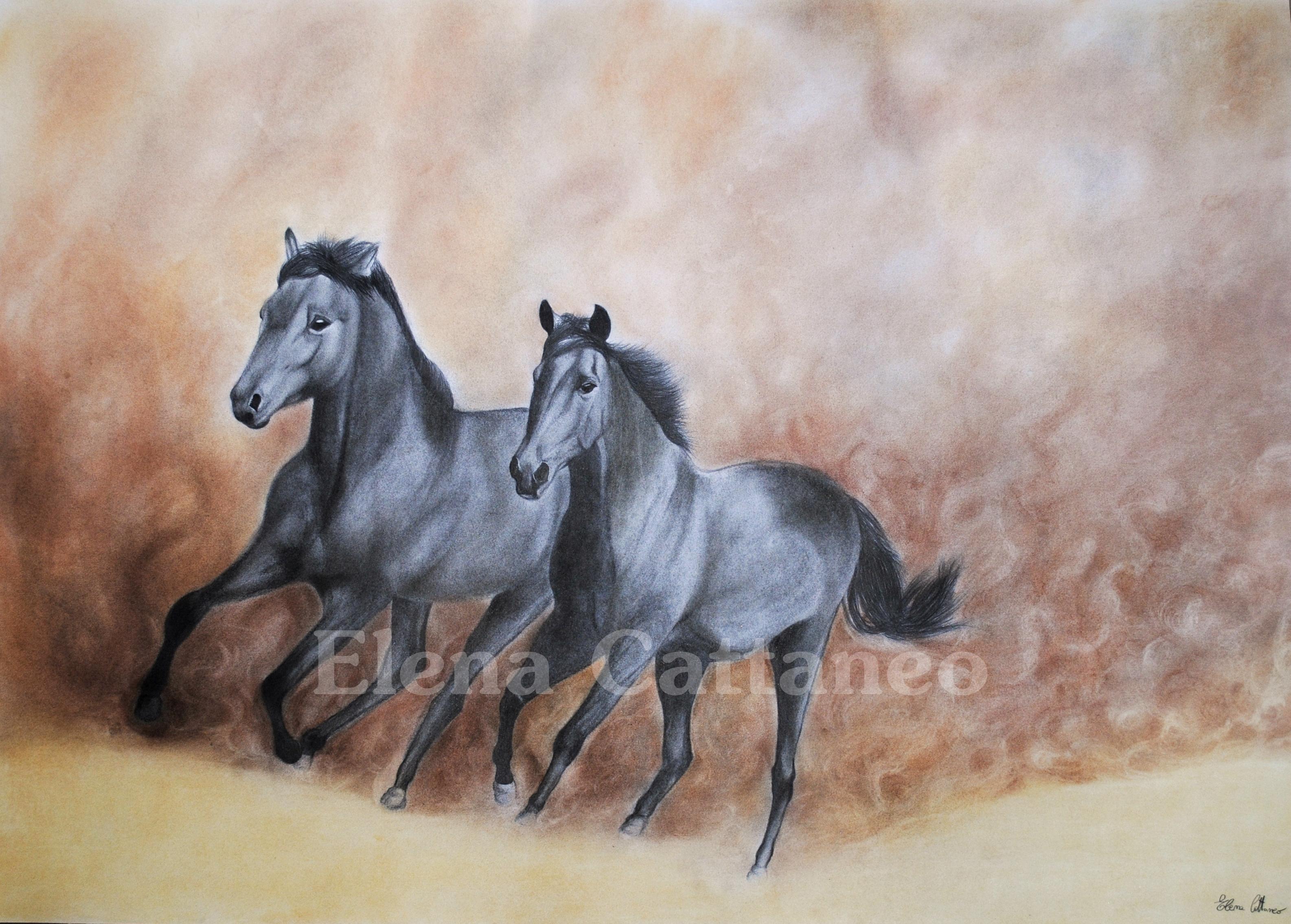 Unico disegni a matita colorata paesaggi migliori pagine da colorare gratis per bambini for Disegni di cavalli a matita